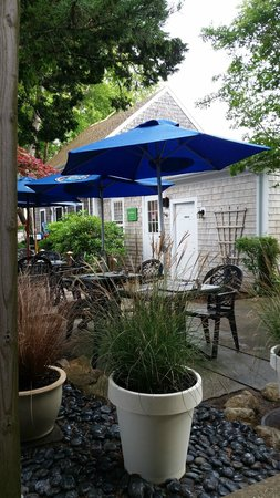 The Blue Coral : Seating area