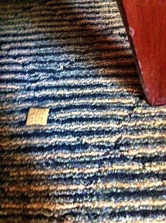 Hyatt Regency Boston : Food on the floor, carpet was sticky