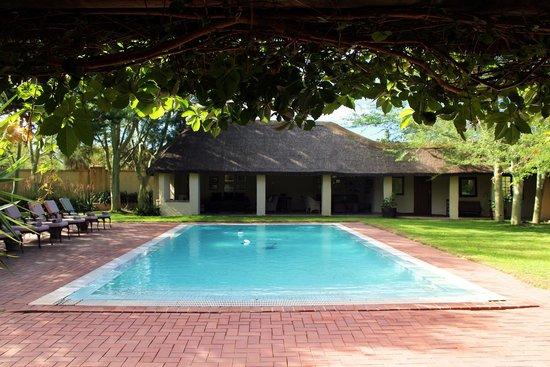 The Elephant House: Pool