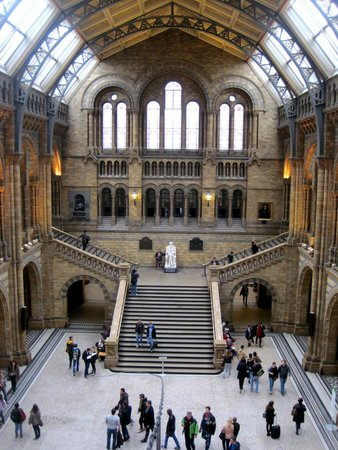 Museum Of Natural History Guided Tours