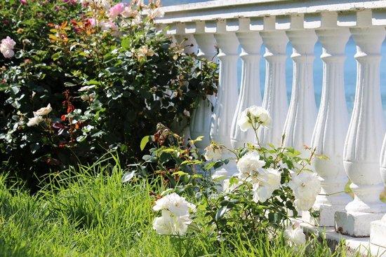 Belle Helene Hotel: Blumenpracht im Hotelgelände/am Pool