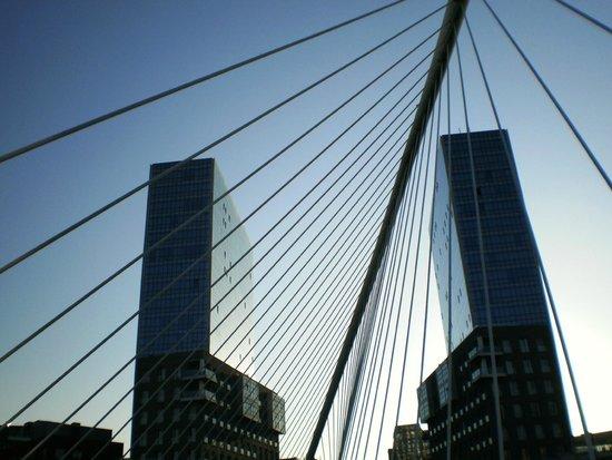 White Bridge (Zubi Zuri): Perspektive
