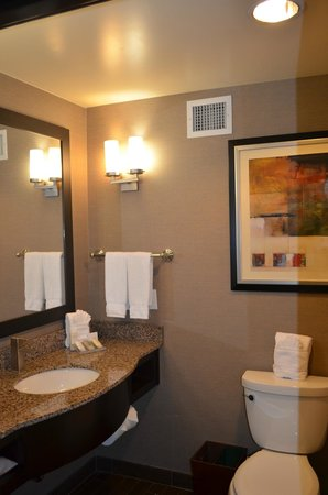 Hilton Garden Inn Houston NW America Plaza: Bathroom