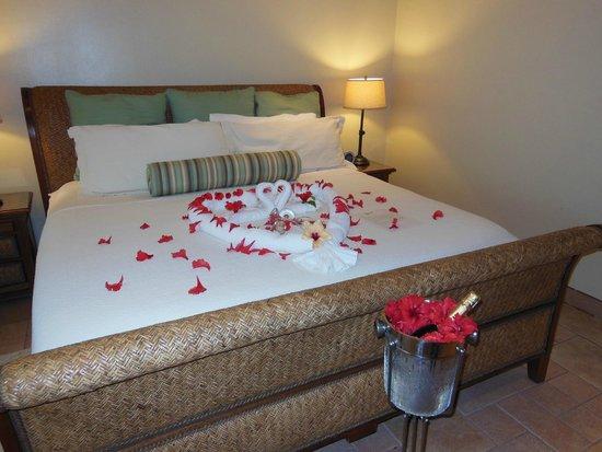 Coco Beach Resort: Honeymoon suite!