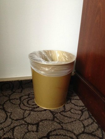 Copthorne Hotel London Gatwick: brown bin