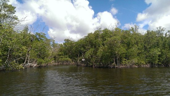 Captain Jack's Airboat Tours: En ballade