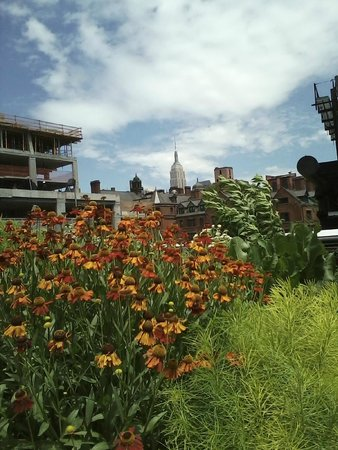 one of many awesome views from High Line