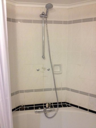 Copthorne Hotel London Gatwick : crappy shower