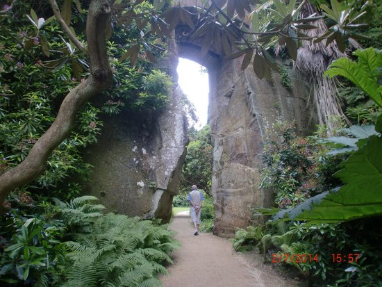 Belsay Hall, Castle and Gardens: the quarry garden