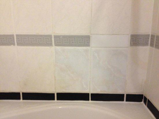 Copthorne Hotel London Gatwick: Bathroom Tiles