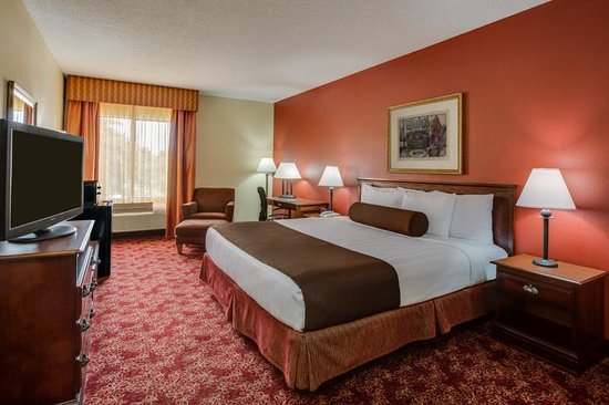 BEST WESTERN  Fort Lauderdale Airport/Cruise Port: One King Guest Room