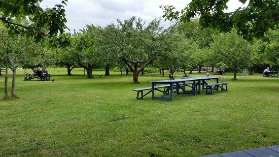 Rosendals Garden : mysigt