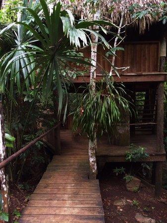 Martz Farm Treehouses and Cabanas Ltd.: Treehouse Enterance