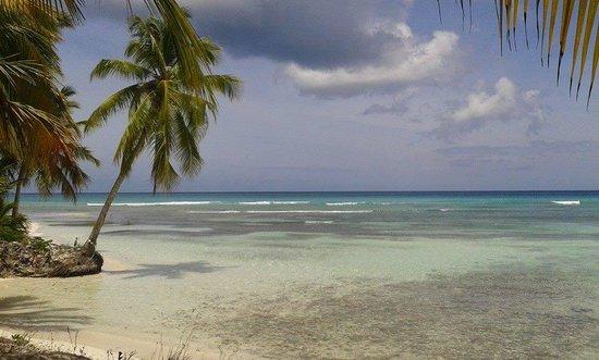 Grand Bahia Principe Bavaro: Isla Saona