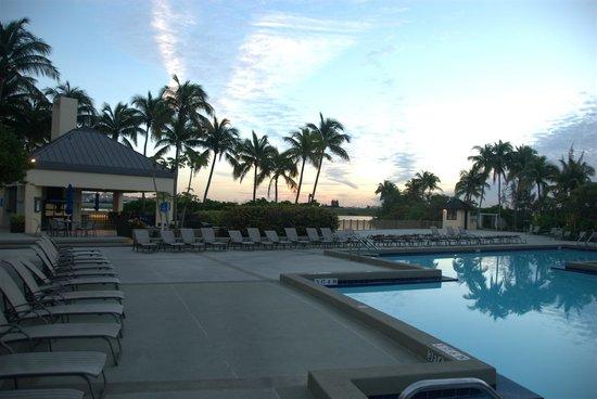 Hilton Miami Airport: Uima-allasalue