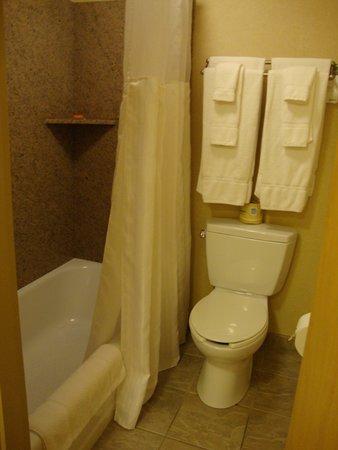 Radisson Hotel Providence Airport: Toilet/Tub