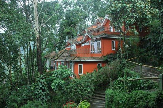 Tea Valley Resort: Teavalley,Munnar