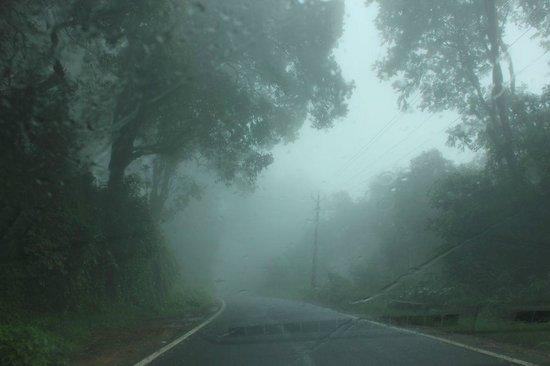 Tea Valley Resort: Way to Munnar
