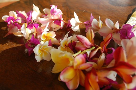 The Raja Singha Luxury Villas Resort: Blumen zum Empfang