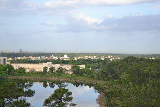 BEST WESTERN Lake Buena Vista Resort Hotel: View in my room.