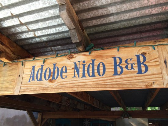 Adobe Nido Bed & Breakfast : Welcome to Adobe Nido B&B