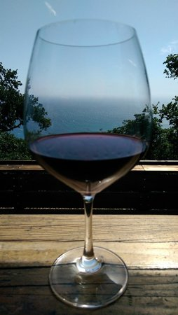 Nepenthe : Great place to enjoy a glass of wine