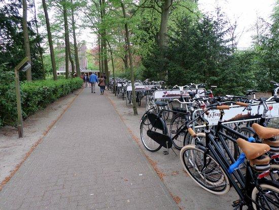 Beer Brewery de Koningshoeven: Estacionamento de carros vazio! Já o de bicicletas...