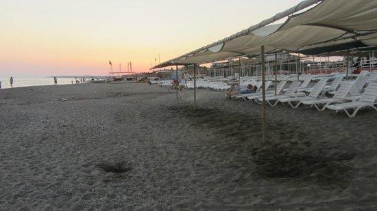 Konakli Nergis Butik Hotel: Beach area