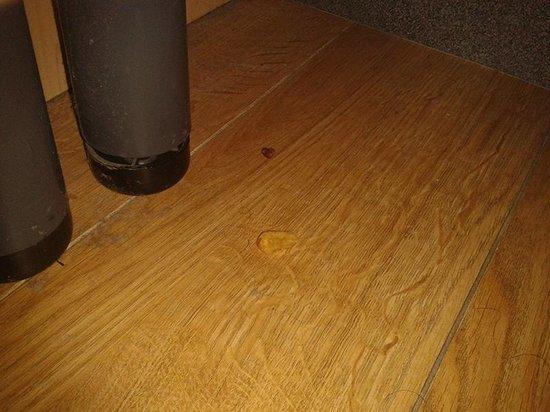 Hotel Bentley : Pelos y comida bajo la cama