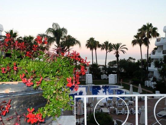IBEROSTAR Marbella Coral Beach: Poolbereich