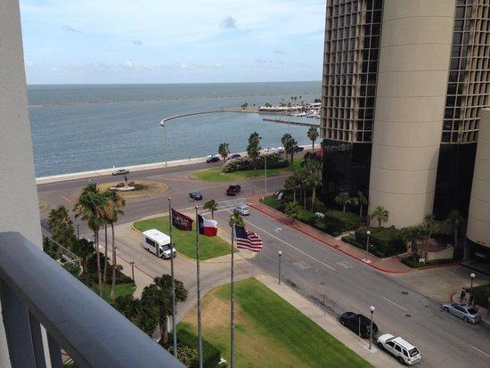 Omni Corpus Christi Hotel: Balcony view