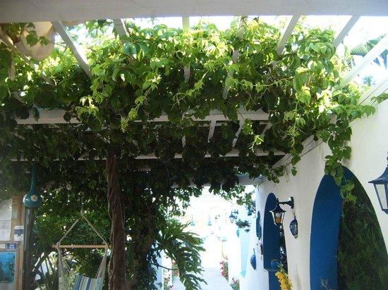 Titika: Dining area shaded