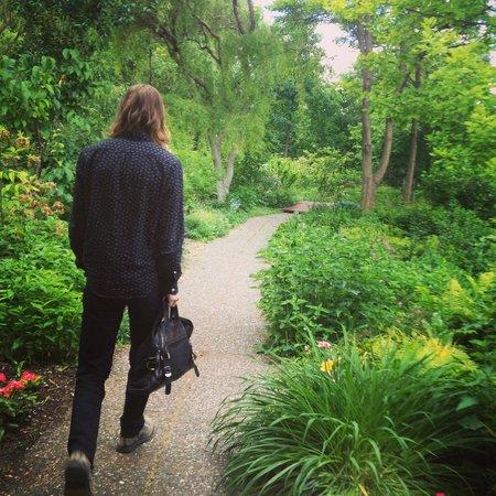 Linden Gardens: walking through
