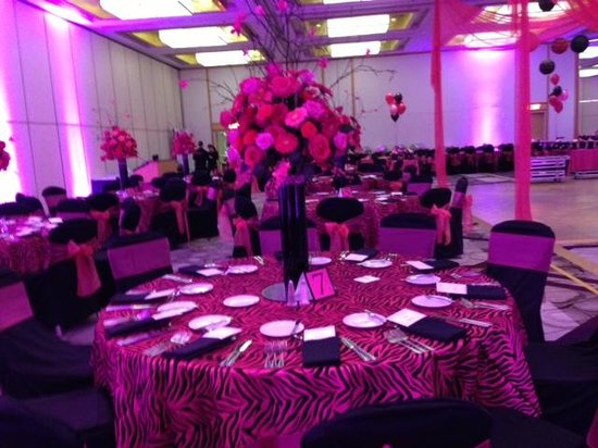 Hyatt Regency Princeton : Pink Zebra At The Hyatt