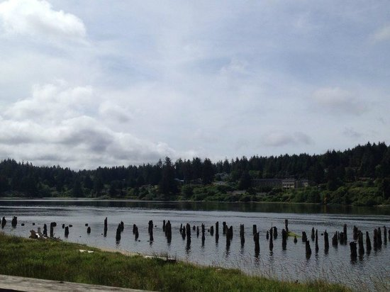 Siuslaw River Coffee Roasters : Beautiful view off the back deck!