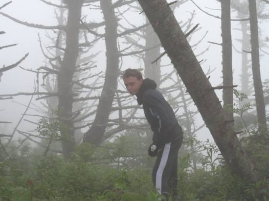 Mount Mitchell State Park: Cloudy