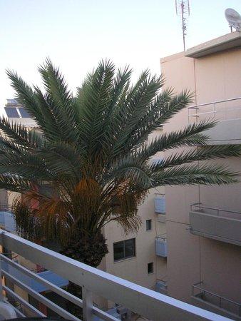 Africa Hotel: Widok z balkonu