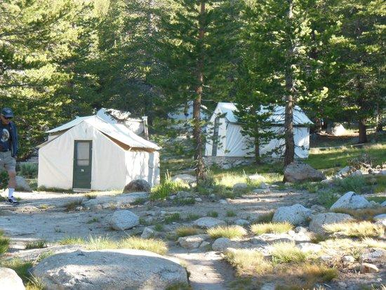 Tuolumne Meadows Lodge: Tent cabins at Tuolumne Meadows