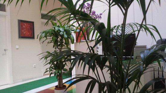Hotel Doña Lola: Recepción