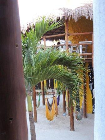 Tribu Hostel: Zona de relax