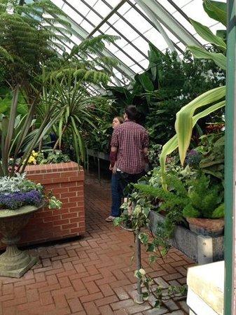 Biltmore Estate: greenhouse