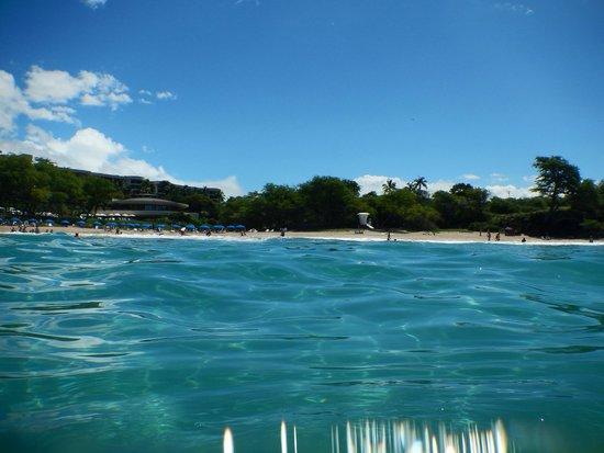 Hapuna Beach Prince Hotel : Hapuna Beach