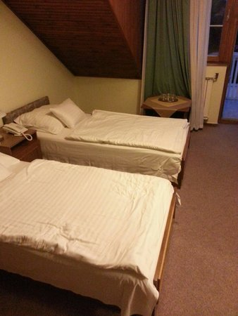 Hotel Molnar Budapest: My room