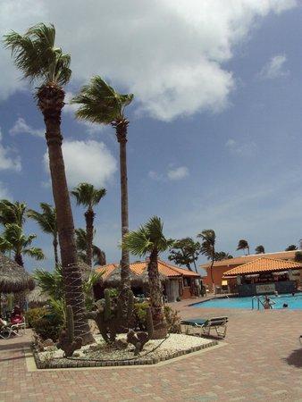 Aruba Beach Club: Pool area