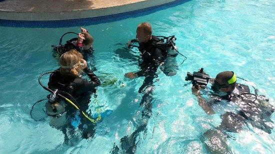 Dressel Divers : Saona Strand (Ausflug mit Dressler)