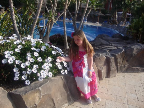 Hotel Elba Carlota : The pool