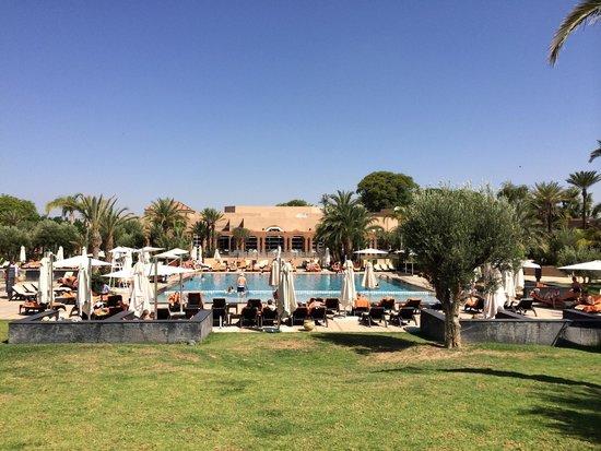 Pullman Marrakech Palmeraie Resort and Spa : Piscine