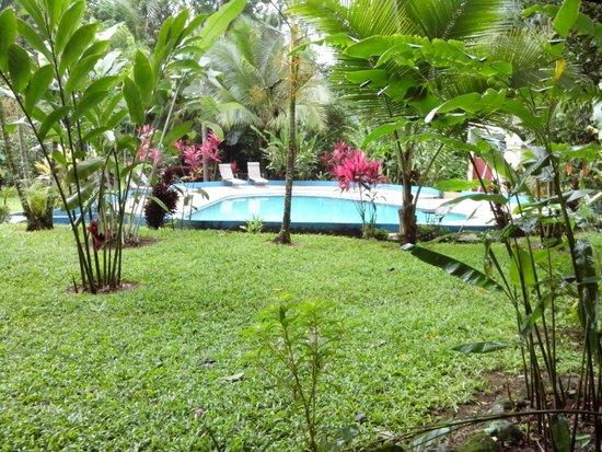 Hotel Lavas del Arenal: Área de piscina