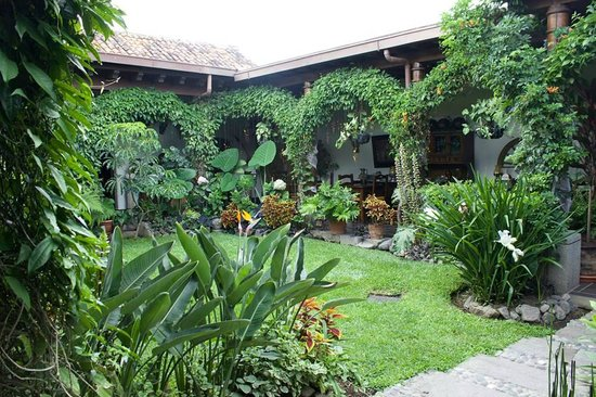 Hotel la Catedral: Courtyard
