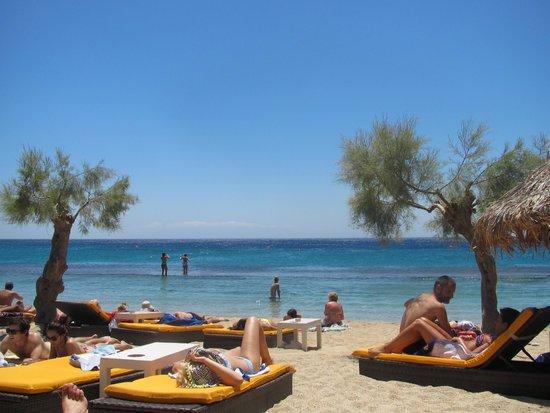 Paradise Beach Resort and Camping: Paradise Beach